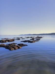 shell bag reefs_San Rafael