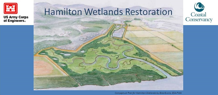 Hamilton Wetlands Restoration