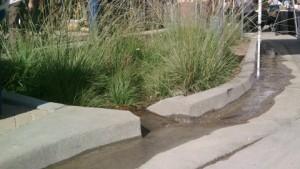 riverdale swale by LA CreekFreak