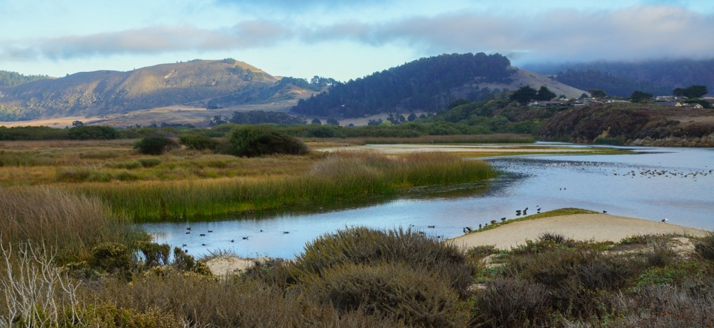 Carmel River Lagoon Wetlands