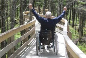 Man in wheelchair with arms in air on accessible trail through redwoods